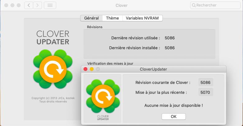 Clover Créateur-V10 - Page 39 Captu335