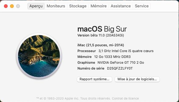 macOS Big Sur 11 / 11.1 / 11.2 / 11.3 (Beta) - Page 5 Captu713