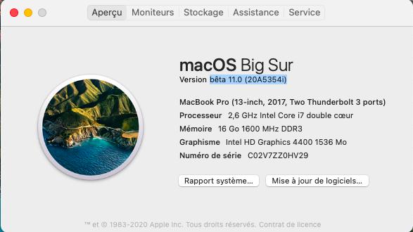 macOS Big Sur 11 / 11.1 / 11.2 / 11.3 (Beta) - Page 5 Captu728