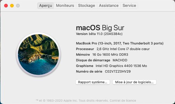 macOS Big Sur 11 Beta - Page 9 Captu750