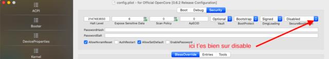 macOS Big Sur 11 Beta - Page 10 Captu774