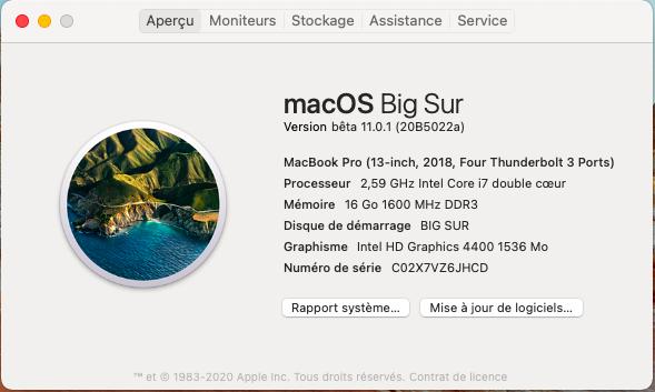 macOS Big Sur 11 Beta - Page 11 Captu809