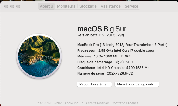 macOS Big Sur 11 / 11.1 / 11.2 / 11.3 (Beta) - Page 13 Captu850