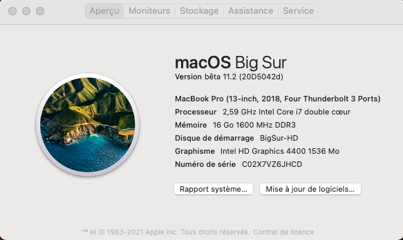 macOS Big Sur 11 / 11.1 / 11.2 / 11.3 (Beta) - Page 13 Captu867