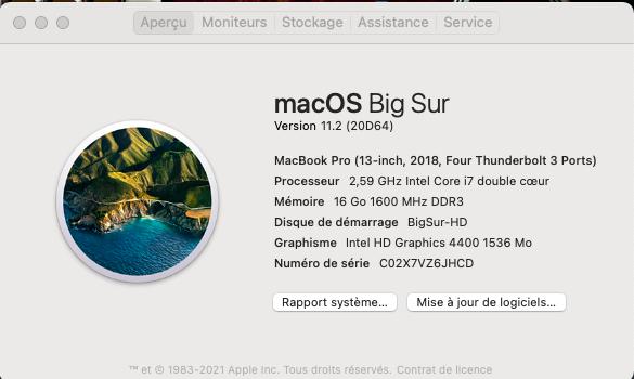 Mise a jour macOS Big Sur 11.2 (20D64) Captu880