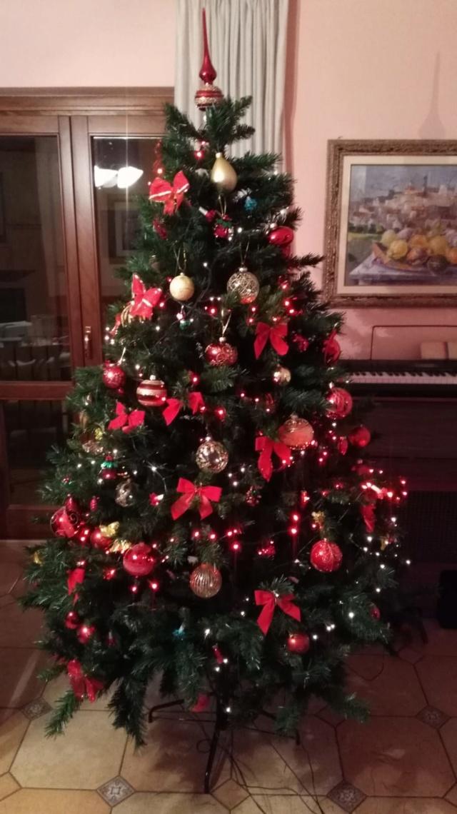 Presepio o albero di Natale? Albero10