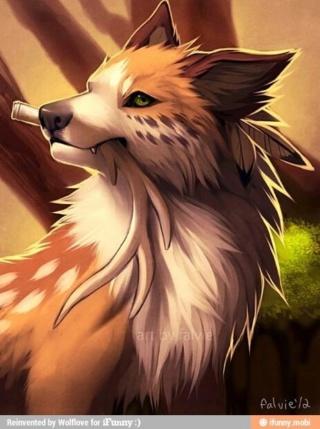 [Officiel]Les chiens, nos fidèles compagnons 22971d10