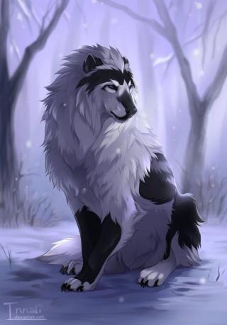 [Officiel]Les chiens, nos fidèles compagnons Ebeeed10