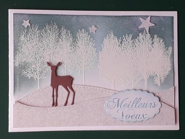 Noël 2018, cartes reçues hors ronde  - Page 2 20181233
