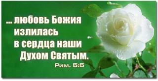 Стихи на Пятидесятницу,Троицу 220_9010