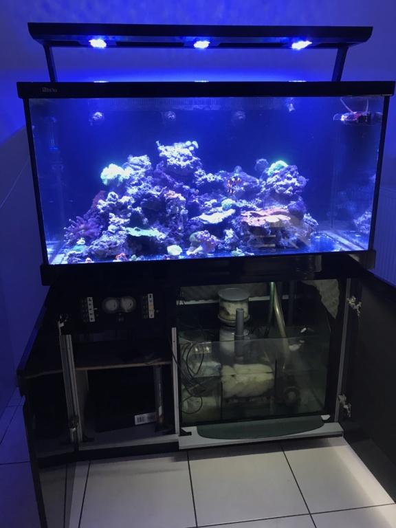 Nouveau bac - Red Sea Max s500 34995610