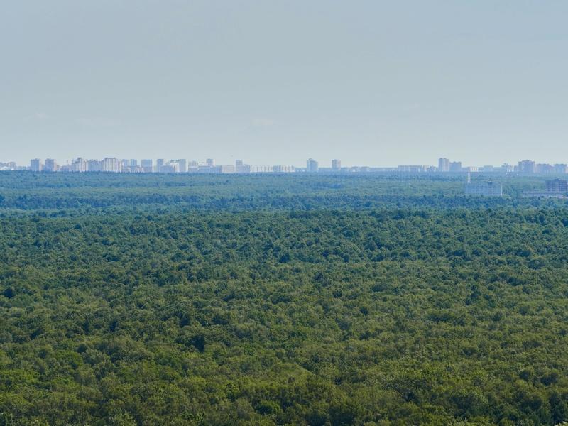 """Реальные (не рекламные) фото видов из окон 30-го этажа ЖК """"Золотая звезда"""" (панорамы) - на город и на Измайловский парк 7ytecq14"""
