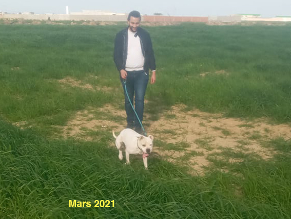 BATBOUTA, identifiée 788.269.100.010.740, en refuge à Tunis 15812010