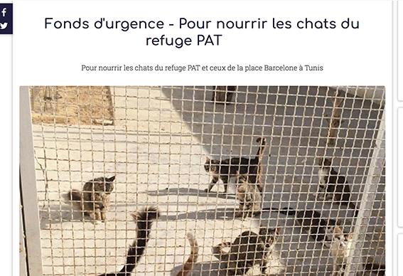 Aide CCTNA pour les animaux du refuge de la PAT Captur23