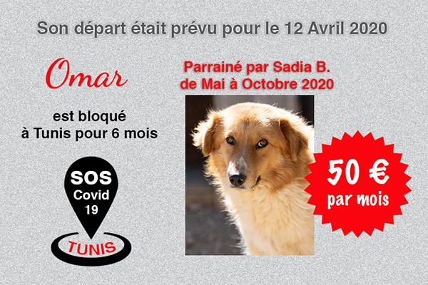 Pandémie COVID19 - Nos protégés bloqués à Tunis Cctna_27