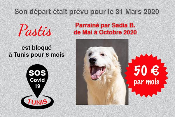 Pandémie COVID19 - Nos protégés bloqués à Tunis Cctna_28