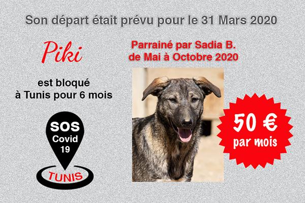 Pandémie COVID19 - Nos protégés bloqués à Tunis Cctna_30