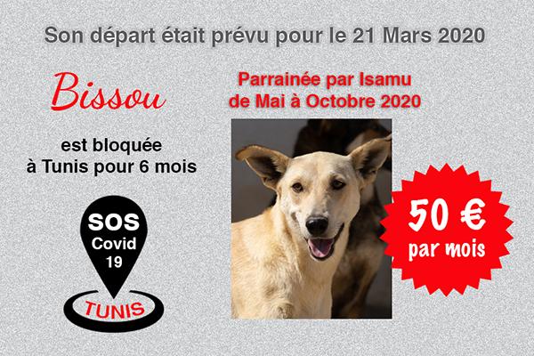 Pandémie COVID19 - Nos protégés bloqués à Tunis Cctna_31