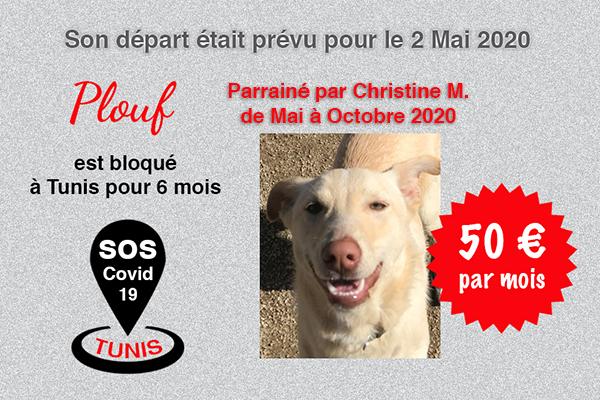 Pandémie COVID19 - Nos protégés bloqués à Tunis Cctna_37
