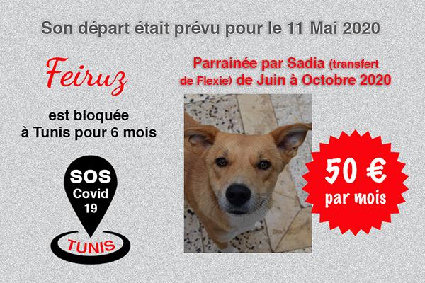 Pandémie COVID19 - Nos protégés bloqués à Tunis Cctna_41