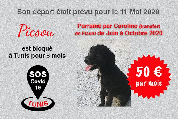 Pandémie COVID19 - Nos protégés bloqués à Tunis Cctna_42