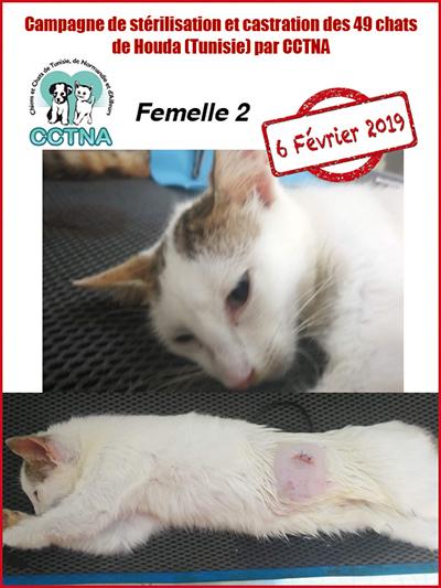 Aide CCTNA pour les animaux de HOUDA - Page 2 F210