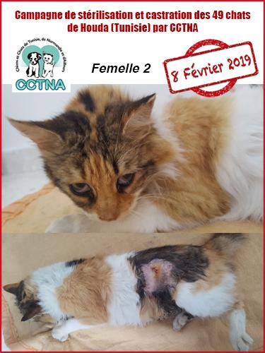 Aide CCTNA pour les animaux de HOUDA - Page 2 F212