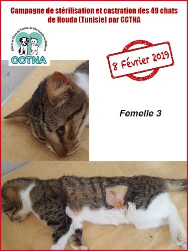 Aide CCTNA pour les animaux de HOUDA - Page 2 F312