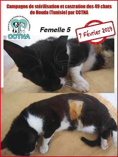Aide CCTNA pour les animaux de HOUDA - Page 2 F511