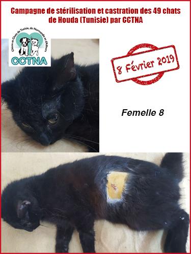 Aide CCTNA pour les animaux de HOUDA - Page 2 F810