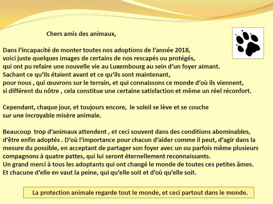 Les heureux adoptés au Luxembourg - 2018 Les_st25