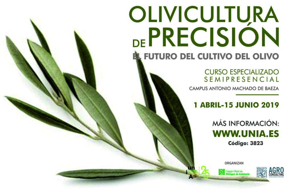 """IV Edición del Curso """"OLIVICULTURA DE PRECISIÓN. EL FUTURO CULTIVO DEL OLIVO"""" Curso_10"""