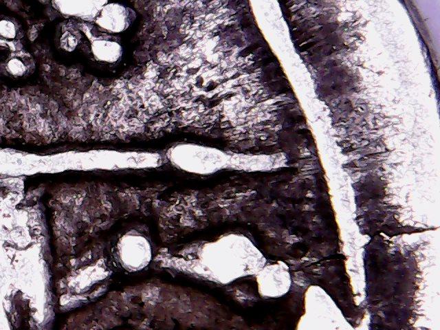 Denario de la gens Lutatia. Q. LVTATI - Q. Galera con cabeza de mujer y acrostolium. Roma. Expans10