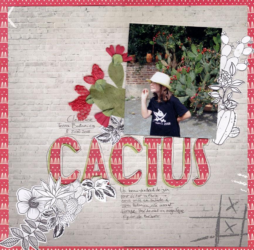 Novembre 2018, le 6ème sens est de retour Cactus10