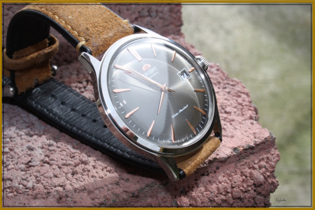orient bambino V4 - Page 20 Img_1913