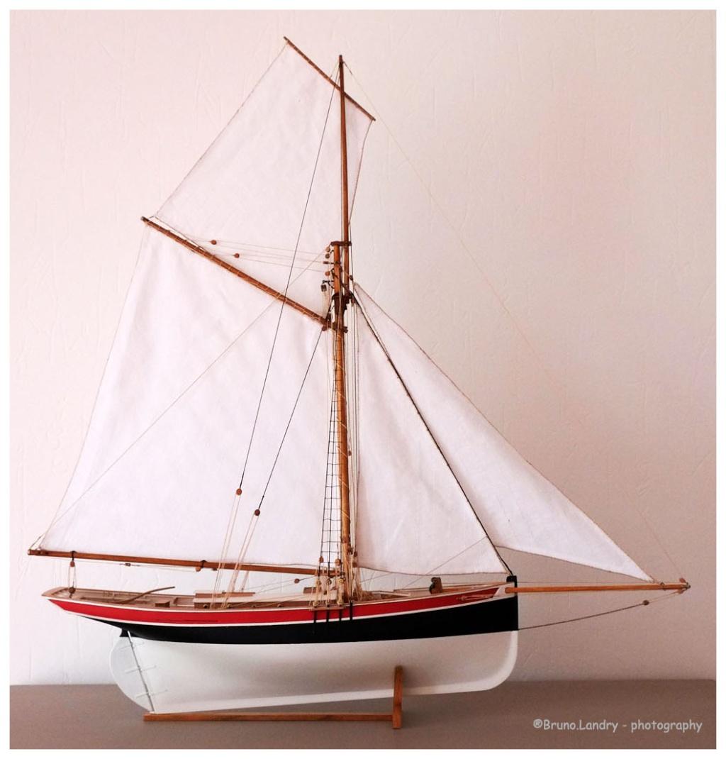Le St Michel II cotre de Jules Verne en bareau-moule Ech: 1/1350 ème 010