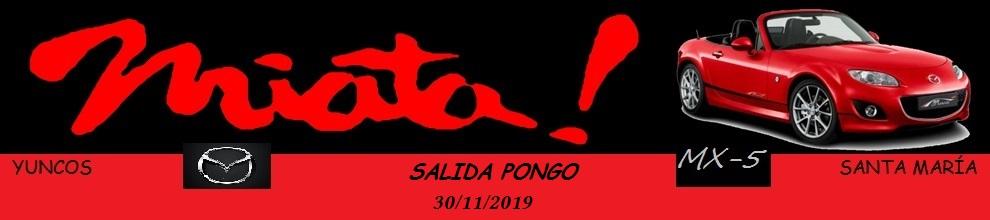 PONGO 2019 Logo_i10
