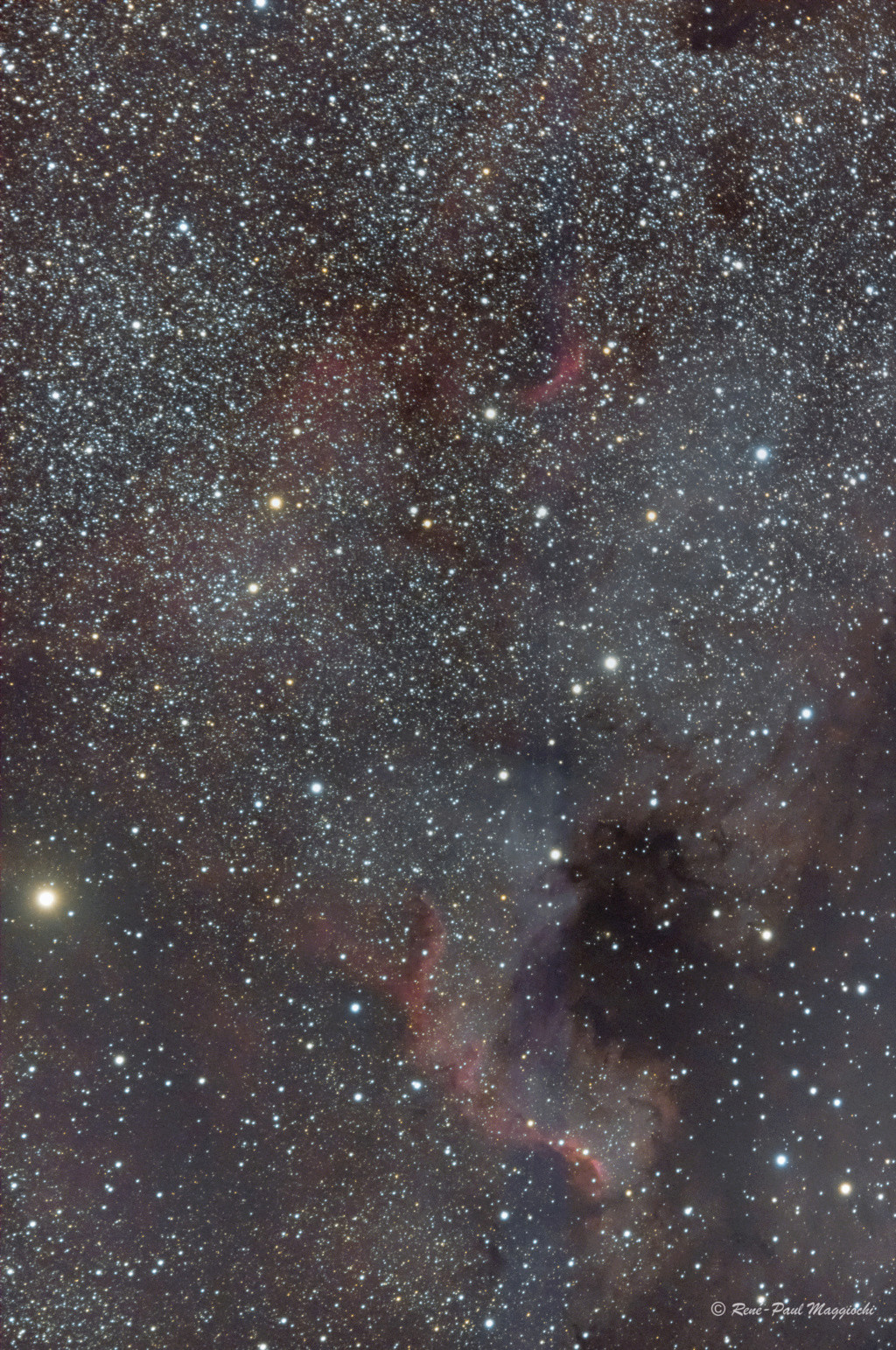 Egalayes (suite) M33 et NGC7000 North_10