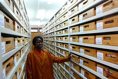 Archives du Palais Impérial