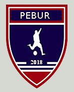 Ligue de Football Lédonienne Pebur11