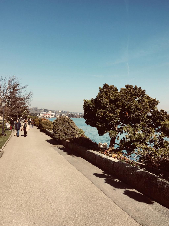 Ville de Morges en Suisse  7b584c10