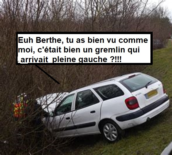 LA DER DE L'ETE Gremli12