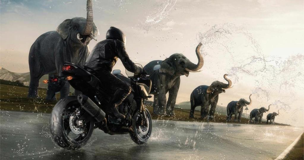 Pour ceux qui aiment la photo, motard ou pas, amateur averti ce topic est pour vous... - Page 10 Moto-p10