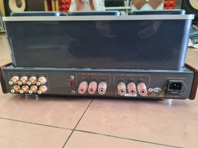 Cayin A-88t MK2 REFERENCE (SOLD) Whats223