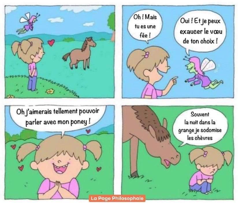 LE GRAND FOURRE-TOUT - Page 16 Fb_im242
