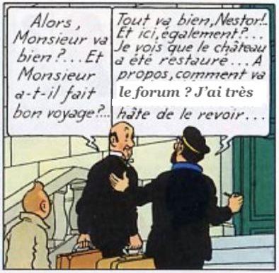 Le Château de Moulinsart, 1/60 scratch par migou31 - Page 11 Haddoc11