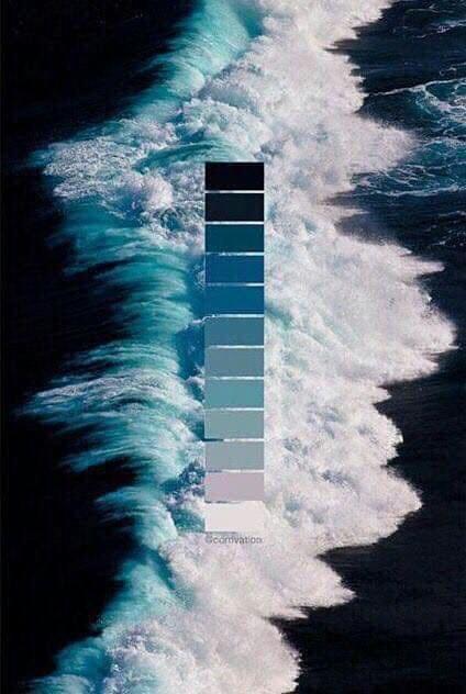 تناسق الألوان في الطبيعة Eeeoee39