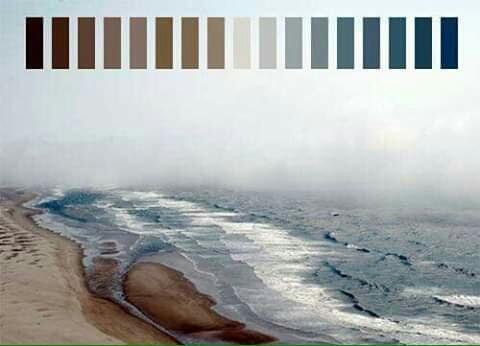 تناسق الألوان في الطبيعة Eeeoee42
