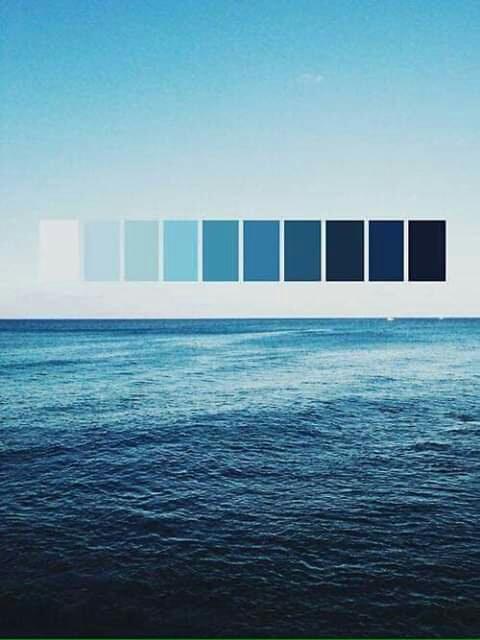تناسق الألوان في الطبيعة Eeeoee44