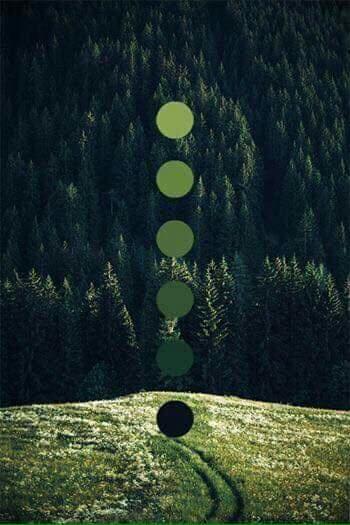 تناسق الألوان في الطبيعة Eeeoee47